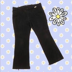 Pants - Navy 👖Pants-Bootcut-Short